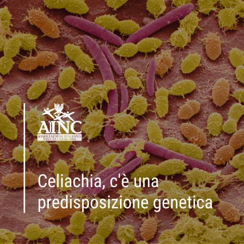 E se ci fosse una predisposizione genetica alla celiachia?