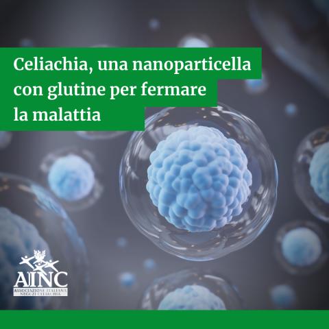 Celiachia, una nanoparticella con glutine per fermare la malattia